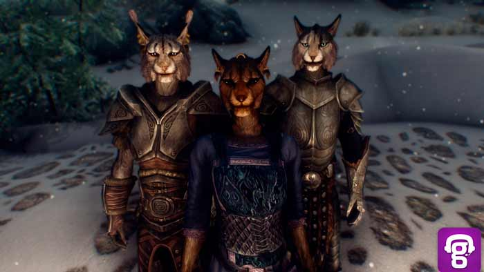 racas-do-elder-scrolls-online-beastfolk-khajiit