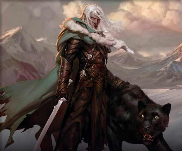 vale-do-vento-gelido-drizzt-do-urden-corpo